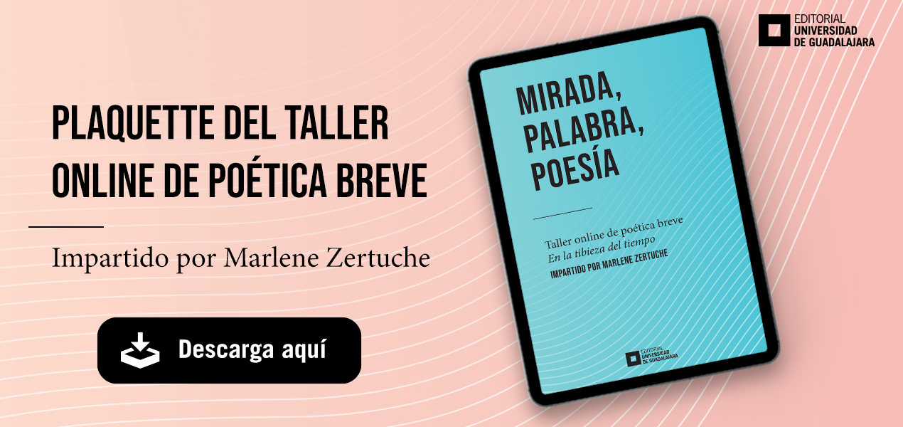 Plaquette del taller online de minificción de poética breve